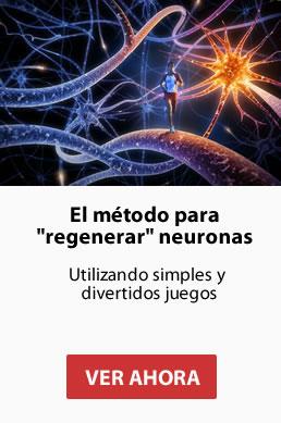 regenerar nueronas