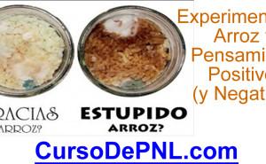 Imagen de Experimento de Emoto sobre arroz